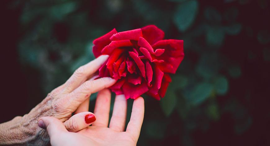 Use flower To Make Someone Fall In Love  With You